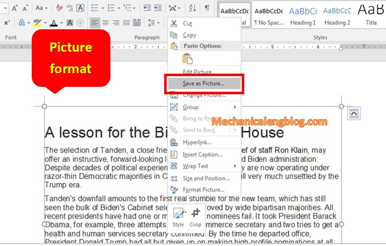 Convert a Word file to image by paste special picture in Word 4
