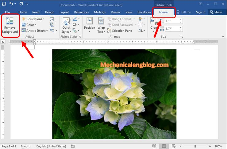How to remove the background of a picture in word 2