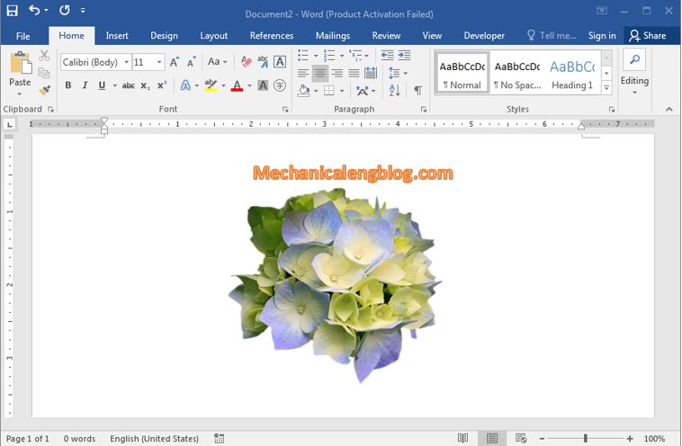 How to remove the background of a picture in word 4