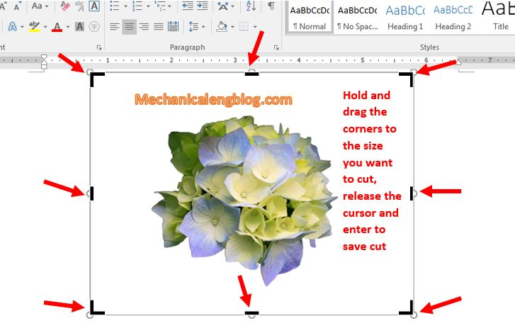 crop and resize image in Word 2