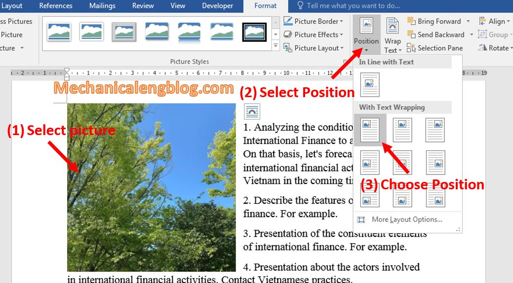 move a picture in Word 4